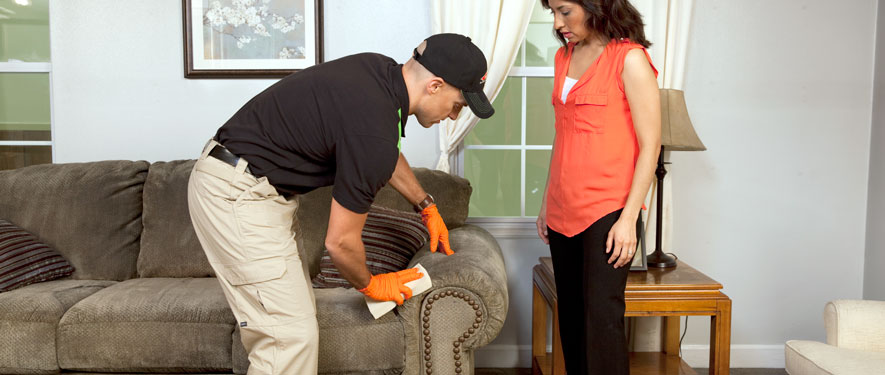 Friendswood, TX carpet upholstery cleaning