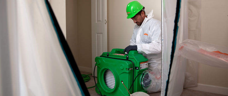 Friendswood, TX mold cleanup